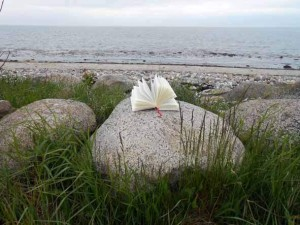 Foto eines aufgeschalgenen Buches auf einem Felsen am Meer